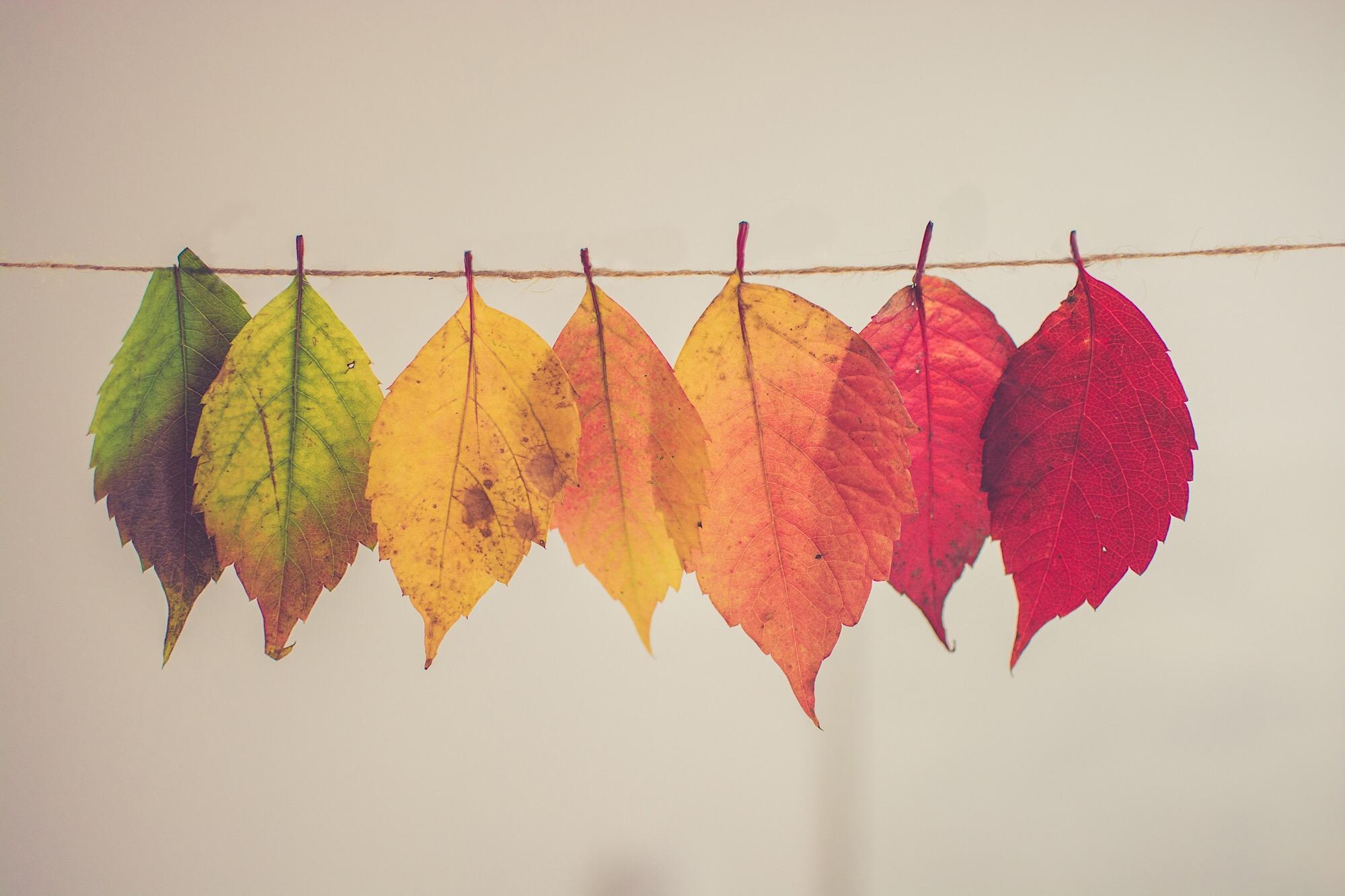 Trasformazioni di colore